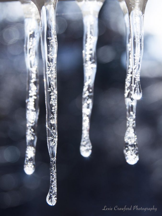Freezing Temperatures Foreshadow Possibility of Cancellation