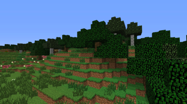A forest biome in which players are commonly spawned.
